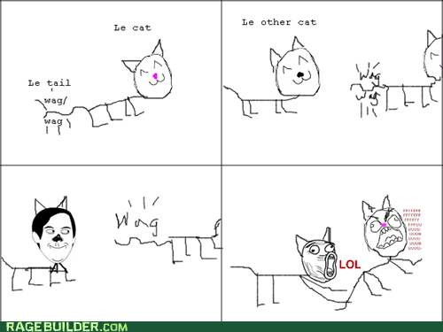 troll cat,cat tail,Cats