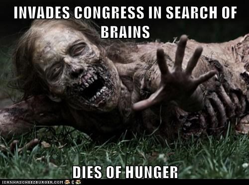 hunger zombie brains Congress The Walking Dead - 6942083328