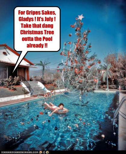 For Gripes Sakes, Gladys ! It's July ! Take that dang Christmas Tree outta the Pool already !!