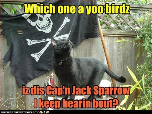 Which one a yoo birdz iz dis Cap'n Jack Sparrow I keep hearin bout?