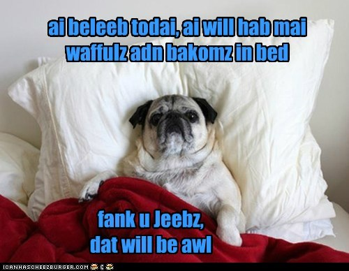 ai beleeb todai, ai will hab mai waffulz adn bakomz in bed