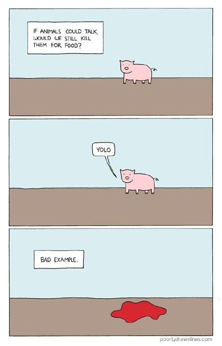 yolo pig talking comic food - 6943145216