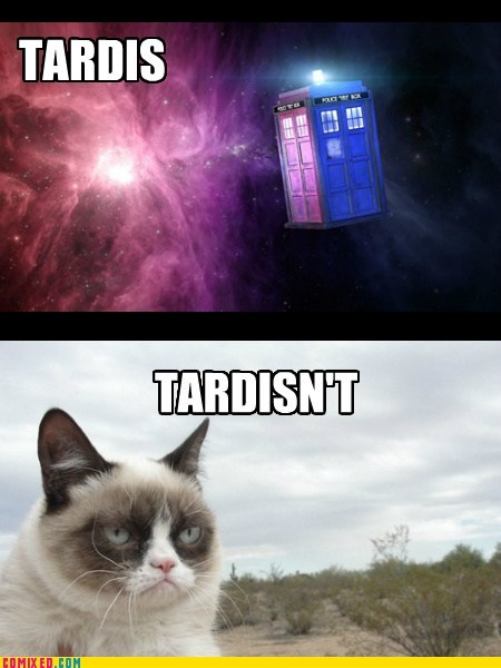 tardis,TV,doctor who,tard the grumpy cat