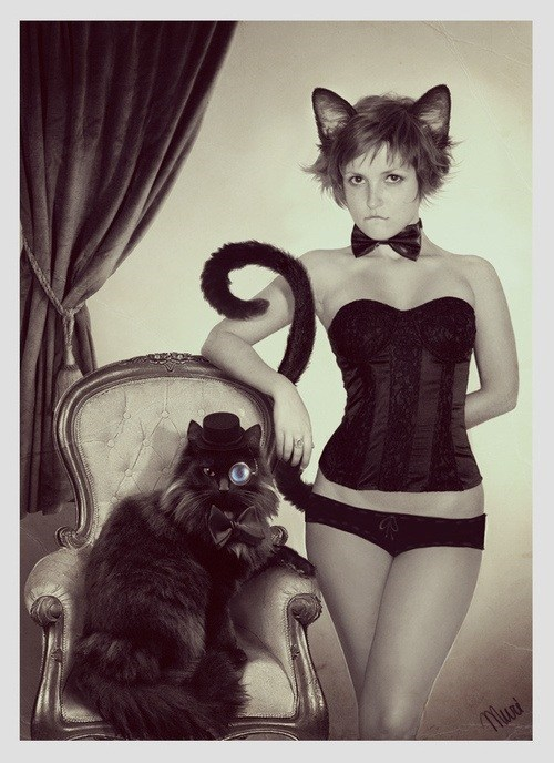 sexy,Cats,underwear