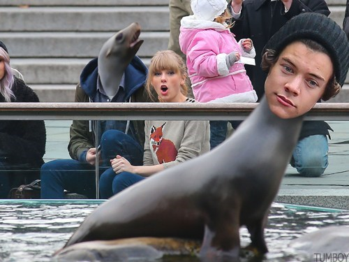 taylor swift Music shoop harry styles face swap funny - 6943215872