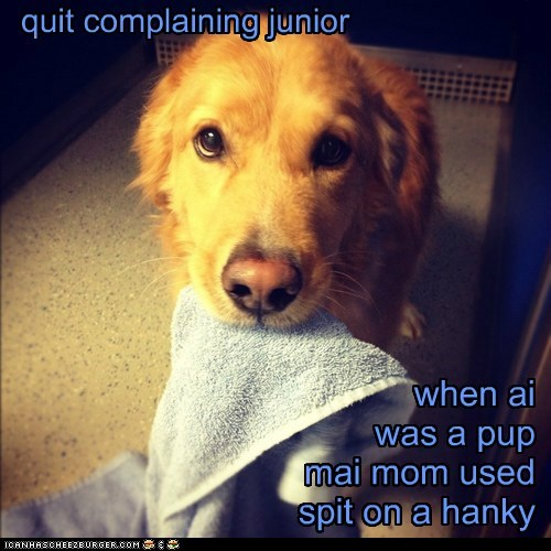 quit complaining junior when ai was a pup mai mom used spit on a hanky