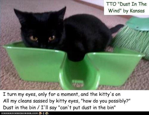 """""""Dust In The Bin"""" (TTO """"Dust In The Wind"""" by Kansas)"""