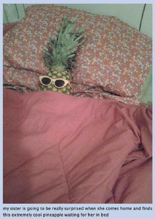 cool,shades,pineapple,prank
