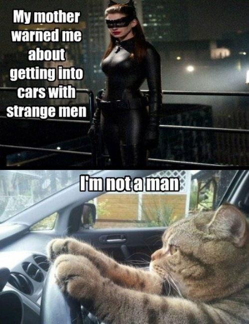 cat anne hathaway the dark knight rises batman - 6943515904