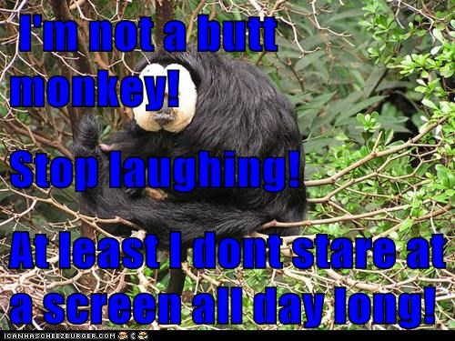 I'm not a butt monkey! Stop laughing! At least I dont stare at a screen all day long!