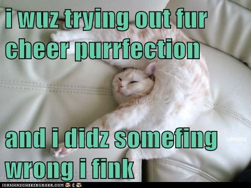 i wuz trying out fur cheer purrfection  and i didz somefing wrong i fink