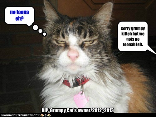 well, wee all kno wha happened to Grumpy Cat's owner.