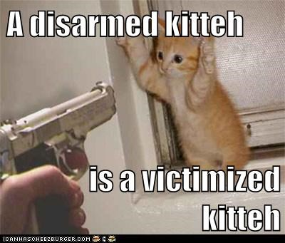 A disarmed kitteh   is a victimized kitteh