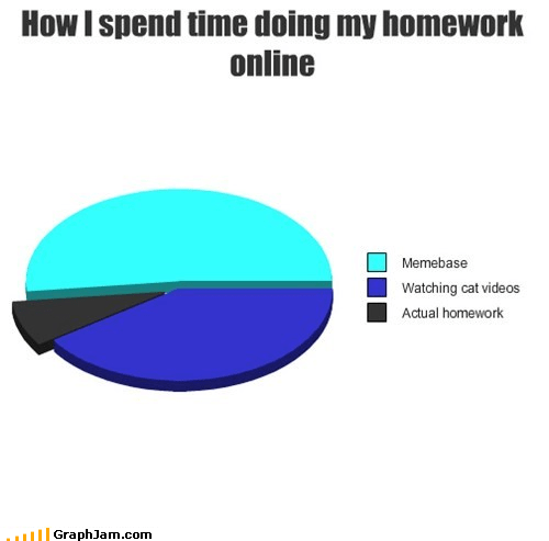 studying homework school Keyboard Cat Pie Chart