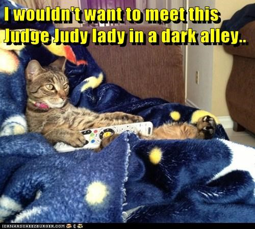 I Wouldn T Want To Meet This Judge Judy Lady In A Dark Alley Lolcats Lol Cat Memes Funny Cats Funny Cat Pictures With Words On Them