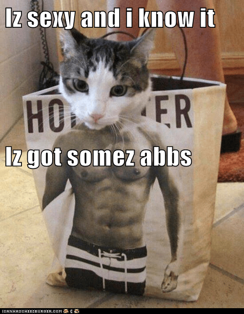 Iz sexy and i know it  Iz got somez abbs