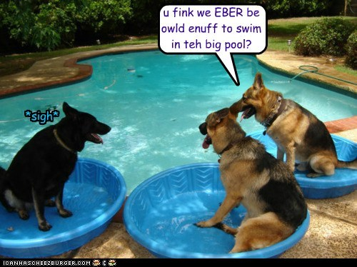 u fink we EBER be owld enuff to swim in teh big pool? *sigh*