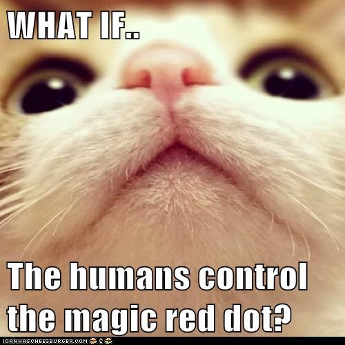 cat conspiracy red dot laser funny - 6945979648