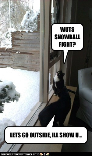 WUTS SNOWBALL FIGHT? LETS GO OUTSIDE, ILL SHOW U...