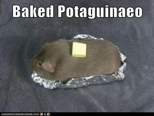 baked,guinea pigs,butter,baked potato
