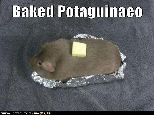guinea pigs butter baked potato - 6946697984