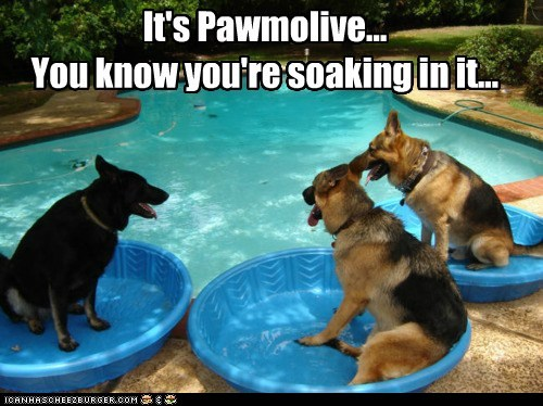 It's Pawmolive... You know you're soaking in it...