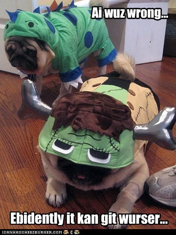 humiliation costume dogs fat pug embarassed wrinkles
