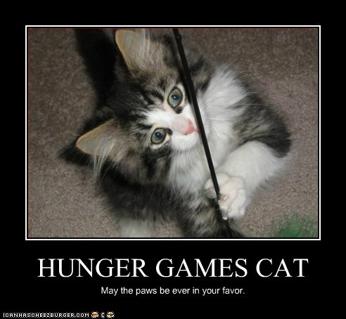 HUNGER GAMES CAT