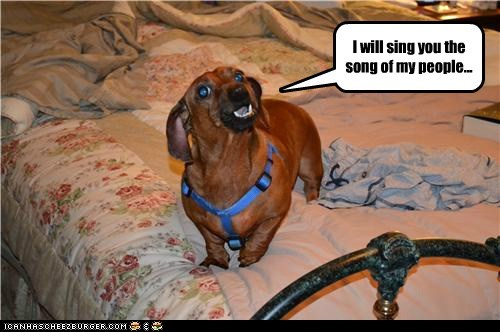 dogs,bed,song of my people,dachshund,howling