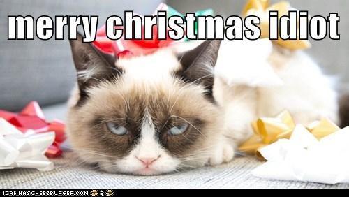 merry christmas idiot