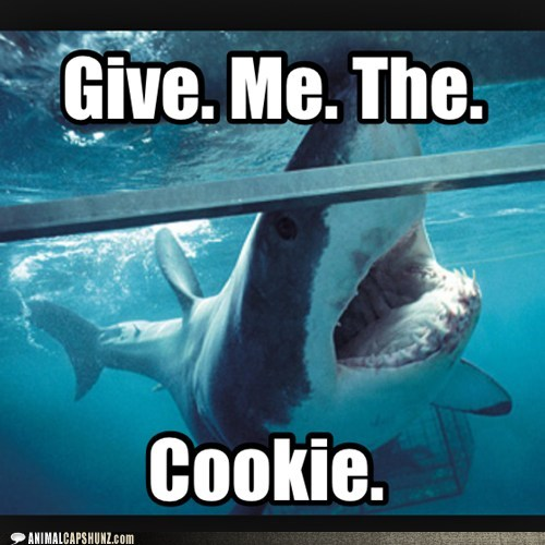 demanding,tank,give me,sharks,cookies