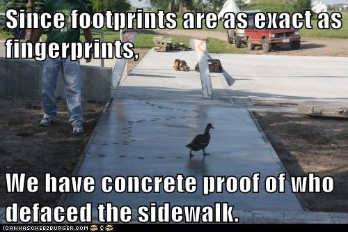 proof sement concrete ducks fingerprints footprints sidewalk exact