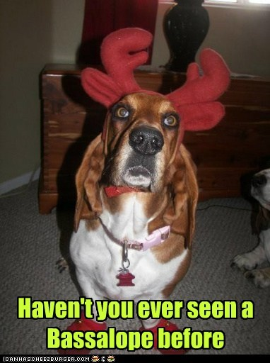 costume lobster basset hound antlers droopy - 6947965440