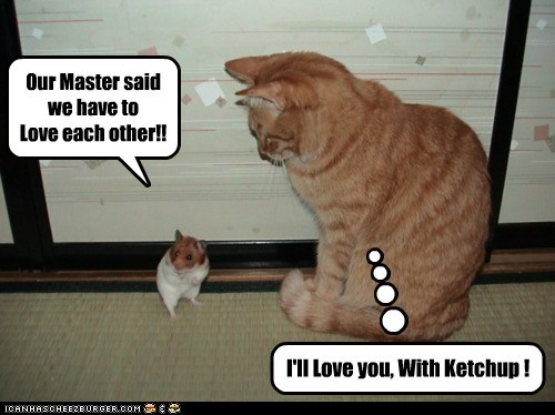 Our Master said we have to Love each other!! I'll Love you, With Ketchup !