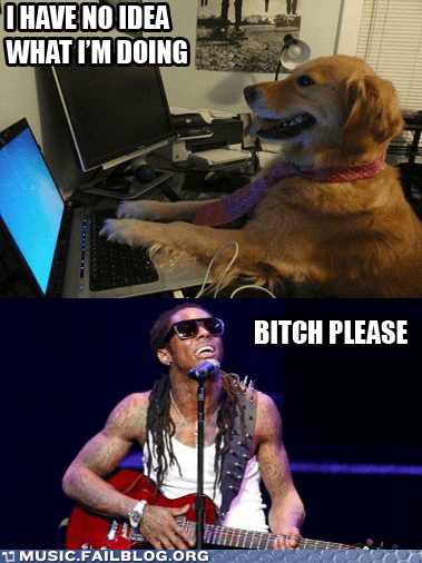 dogs,guitars,lil wayne