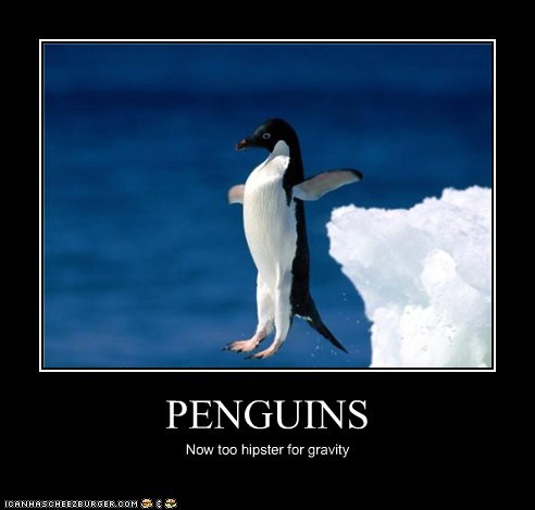 cool floating penguins hipster Gravity ice