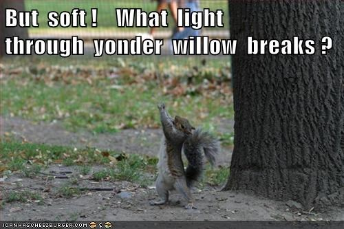 acting,shakespeare,park,squirrels,romeo and juliet
