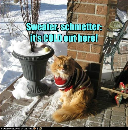 Sweater, schmetter: it's COLD out here!