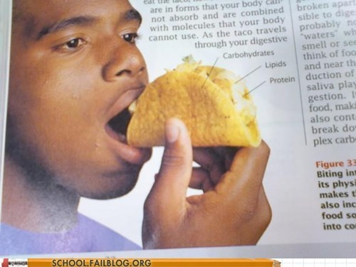 taco,textbook,wrong,food