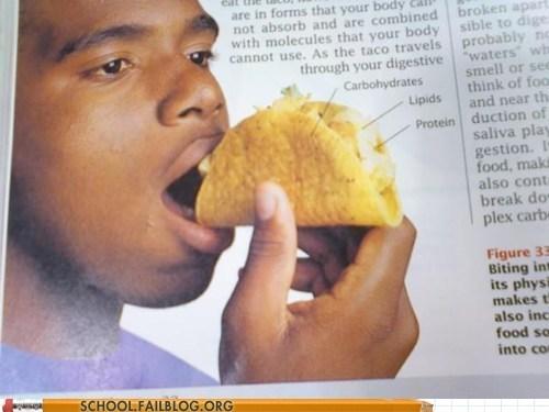 taco textbook wrong food - 6950444800