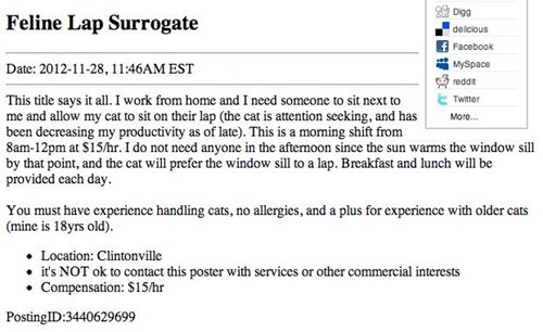 craigslist lap job surrogate Cats