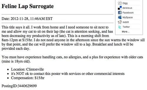 craigslist lap job surrogate Cats - 6951997696