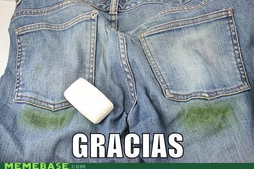spanish,puns,grass