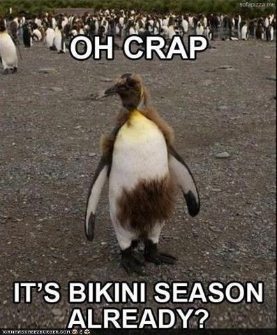 penguins,bikini wax,bikinis