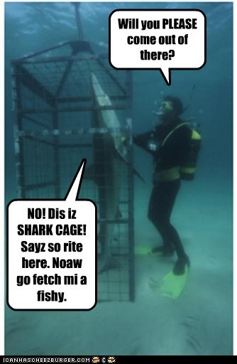 divers,mine,please,cage,sharks,fish,get out