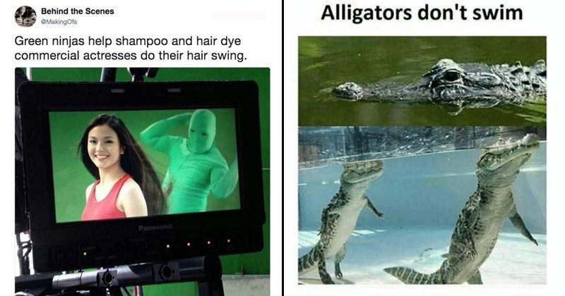 Surreal Memes
