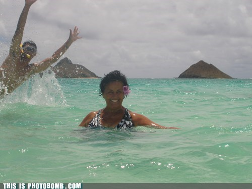 ocean swimming unexpected diver vacation - 6952647168