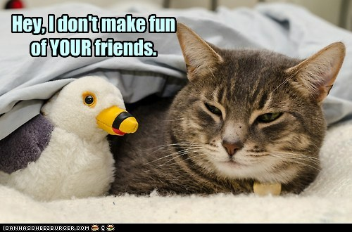 Hey, I don't make fun of YOUR friends.