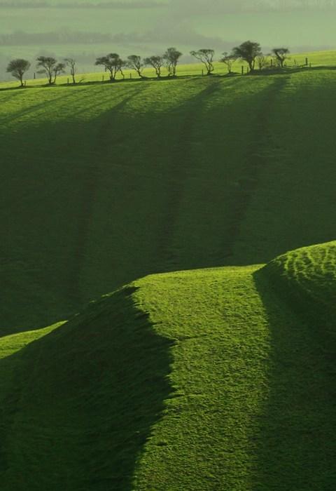 green,hills,landscape
