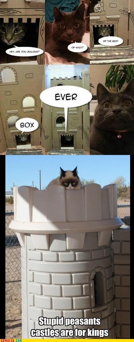 Reframe castle box king Grumpy Cat - 6953251072